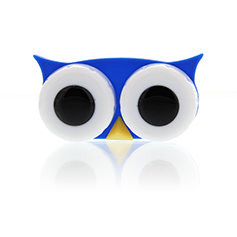 Lens Case Owl Blue